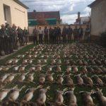 Apróvad vadászat Deszken